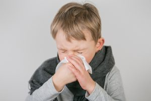 alergia na roztocze
